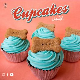 ORDER YOUR CUPCAKE